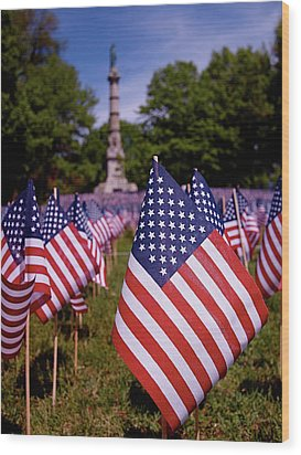 Memorial Day Flag Garden Wood Print by Rona Black