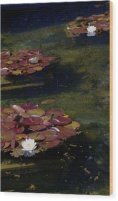 Memories Of Monet Wood Print by Marilyn Wilson