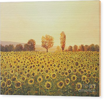 Memories Of The Summer Wood Print by Kiril Stanchev