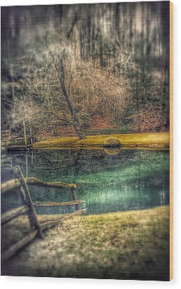 Wood Print featuring the photograph Memories Revisited by Steven Huszar