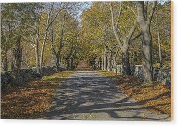 Memory Lane Wood Print by Glenn DiPaola