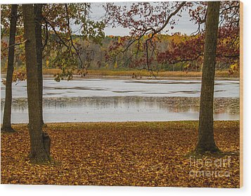Mendon Ponds Wood Print by William Norton
