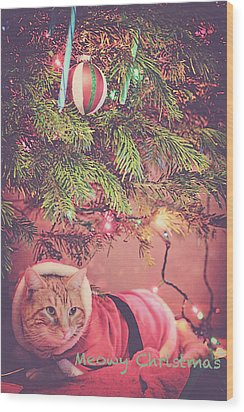 Meowy Christmas Wood Print by Melanie Lankford Photography