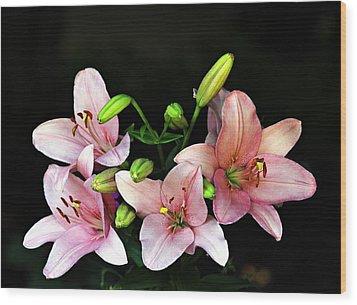 Merlot Lilies Wood Print by Jp Grace