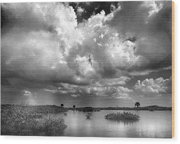 Merritt Island Wood Print