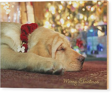 Merry Christmas From Lily Wood Print by Lori Deiter