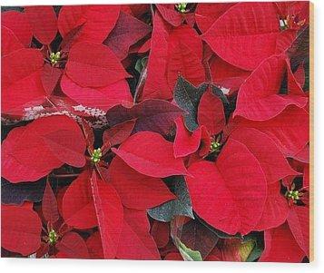 Merry Christmas And Hapy New Year  Wood Print by Marija Djedovic