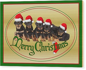 Merry Christmas Rottweiler Puppies Greeting Card Wood Print by Tracey Harrington-Simpson