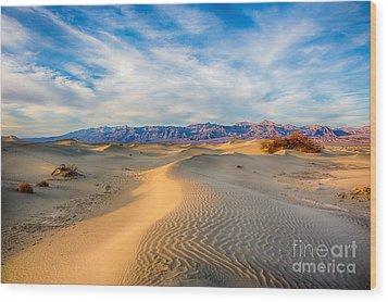 Mesquite Dunes Wood Print