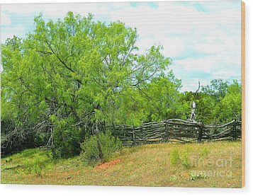 Mesquite Tree And Cedar Post Fence Wood Print