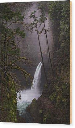 Metlako Falls Oregon Wood Print by Larry Marshall