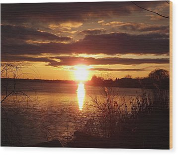 Wood Print featuring the photograph Metro Beach Sunset by Bill Woodstock