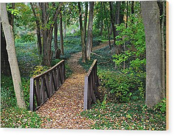 Metroparks Pathway Wood Print by Frozen in Time Fine Art Photography