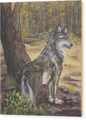 Mexican Gray Wolf Wood Print by Caroline Owen-Doar