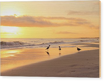 Mexico Beach Sand Pipers Wood Print by Saya Studios