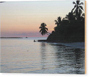 Wood Print featuring the photograph Miami Palms by Shelia Kempf