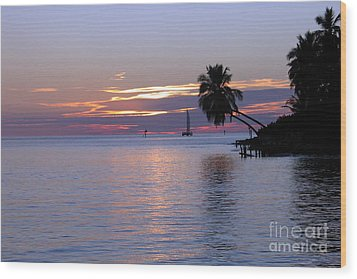 Wood Print featuring the photograph Miami Sunset by Shelia Kempf