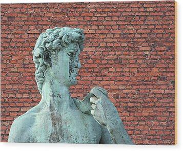 Michelangelos David Wood Print