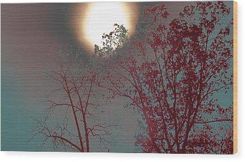 Mid-afternoon Sun Wood Print