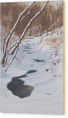 Mid Winter On The Alexauken Wood Print