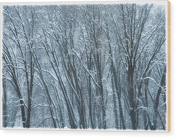 Mid-winter Storm Wood Print by Jonathan Nguyen