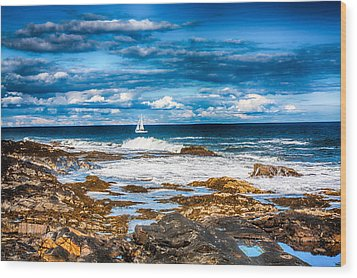 Midday Sail Wood Print by Fred Larson