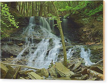 Middle Branch Falls Lower Tier #1 Wood Print