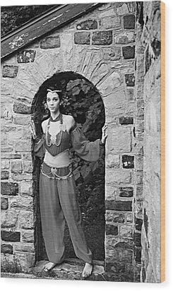 Middle Eastern Princess 2 Wood Print by Stephanie Grooms