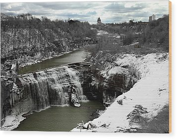 Middle Falls Rochester Ny Wood Print by Richard Engelbrecht