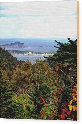 Middle Head Cape Breton Wood Print by Janet Ashworth