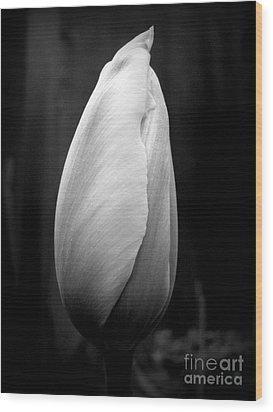 Midnight Blossom Wood Print