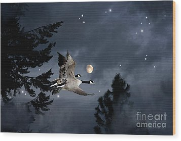 Midnight Flight Wood Print