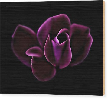 Midnight Knockout Rose Wood Print by Walt Foegelle