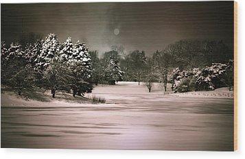 Midnight Stillness Wood Print by Julie Palencia