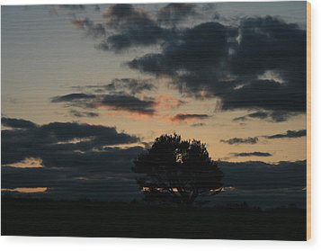 Farm Pasture Midnight Sun  Wood Print by Neal Eslinger