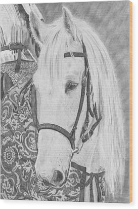 Midsummer Knight Majesty Wood Print