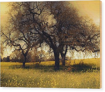 Might Oak Wood Print