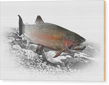 Migrating Steelhead Rainbow Trout Wood Print by Randall Nyhof