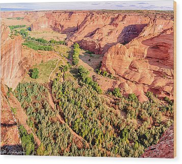 Miles To Go In Canyon De Chelly Wood Print by Bob and Nadine Johnston