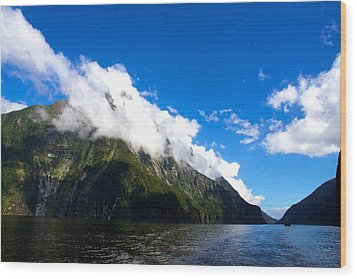 Wood Print featuring the photograph Milford Sound #2 by Stuart Litoff