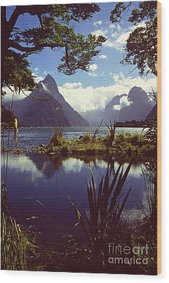 Milford Sound In New Zealand's Fiordland National Park Wood Print by Alex Cassels