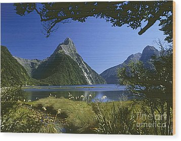 Wood Print featuring the photograph Milford Sound  New Zealand by Rudi Prott