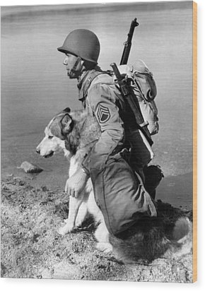 Military Soldier And Dog Vintage  Wood Print by Retro Images Archive