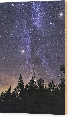 Milky Wood Print