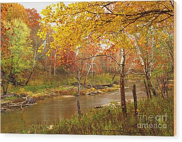 Wood Print featuring the photograph Mill Creek 1 by Jim McCain