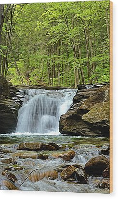 Mill Creek Falls #2 Wood Print