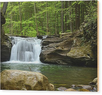 Mill Creek Falls #1 Wood Print