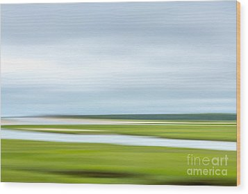 Mill Creek Marsh 1 Wood Print