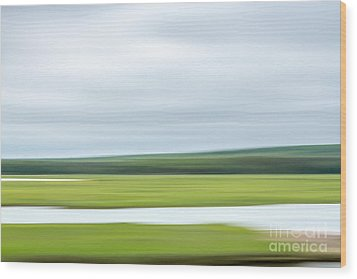 Mill Creek Marsh 3 Wood Print by Susan Cole Kelly Impressions