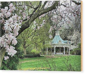 Mill Creek Park In Spring Wood Print by Monnie Ryan